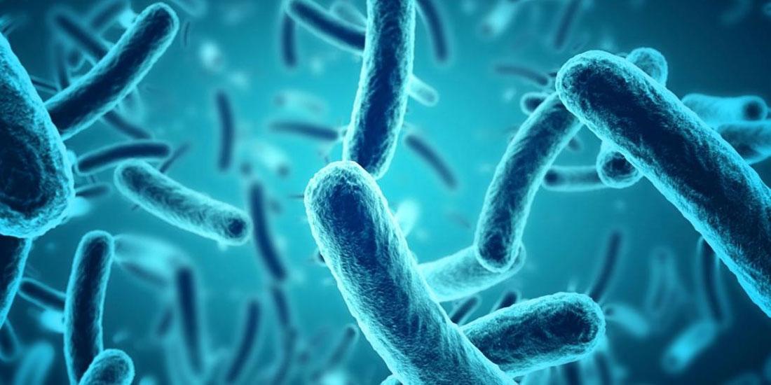 Τραγικός απολογισμός: Πάνω από 1600 άτομα χάνουν κάθε χρόνο τη ζωή τους στη χώρα μας από λοιμώξεις από πολυανθεκτικά βακτήρια