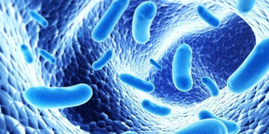 Νέες ενδείξεις ότι τα βακτήρια του εντέρου εμπλέκονται στον αυτισμό