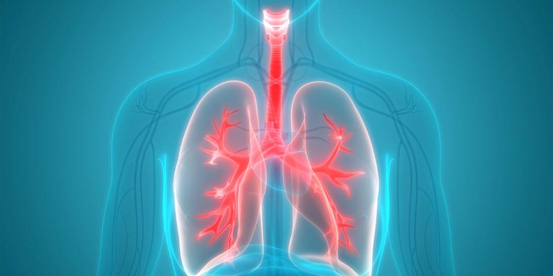 Γιατί η Αυστρία διέκοψε τις μεταμοσχεύσεις πνευμόνων σε Έλληνες ασθενείς; Τι πρέπει να γίνει άμεσα;