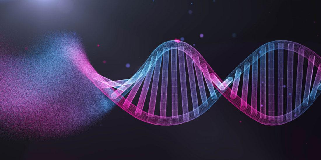 Έρευνα απορρίπτει το «γονίδιο ομοφυλοφιλίας» αλλά αποδέχεται γενετική σύνδεση της σεξουαλικής συμπεριφοράς
