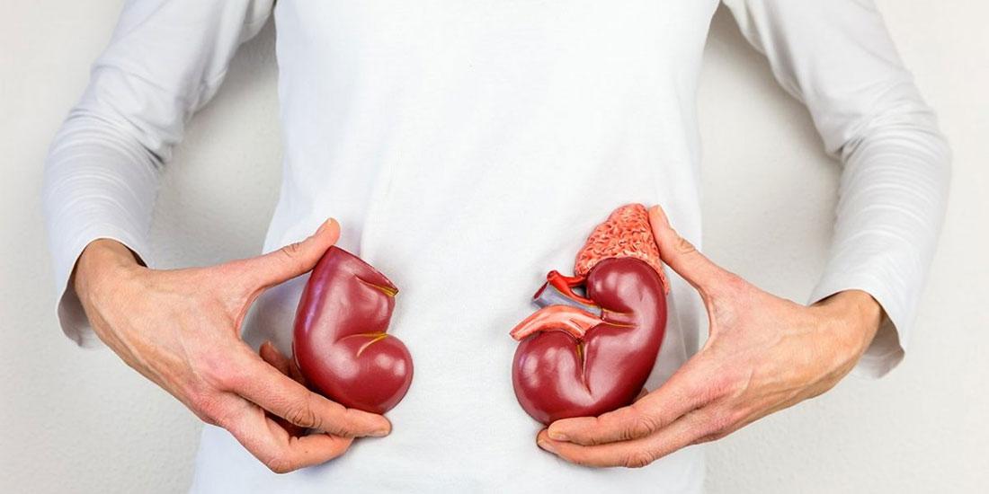 Μέχρι και 7 χρόνια η αναμονή στη λίστα για μεταμόσχευση νεφρού