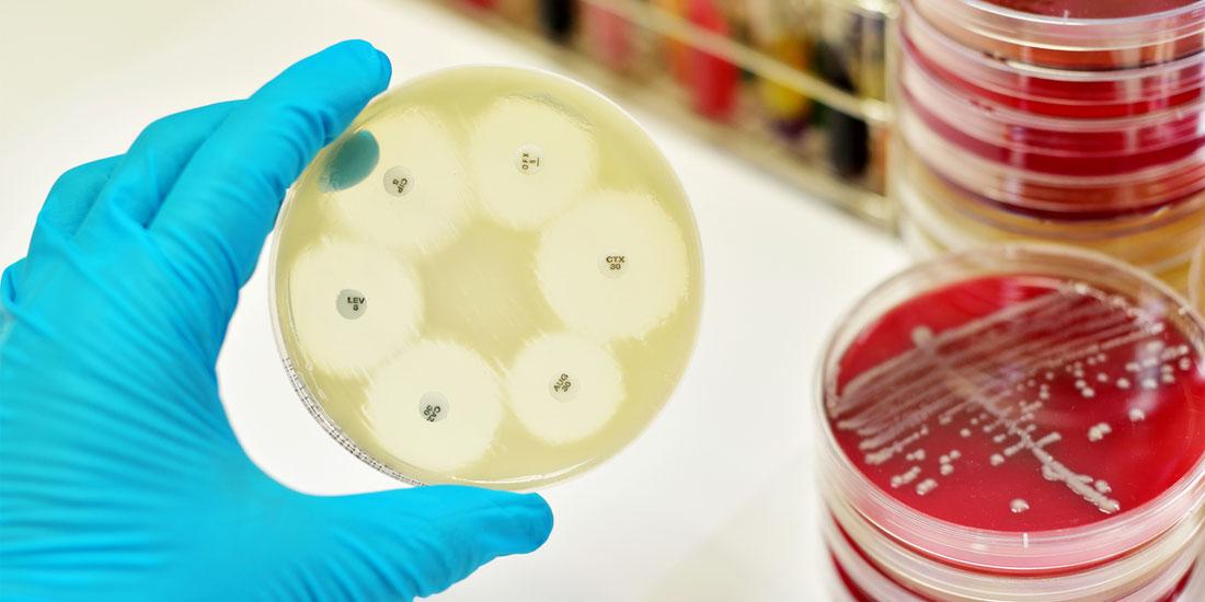 Διαγωνισμός πρωτότυπου σεναρίου με θέμα το πρόβλημα της μικροβιακής αντοχής