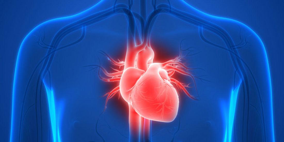 Η πρώτη προσαρμοζόμενου μεγέθους βαλβίδα καρδιάς, ανοίγει νέους δρόμους στην καρδιοχειρουργική