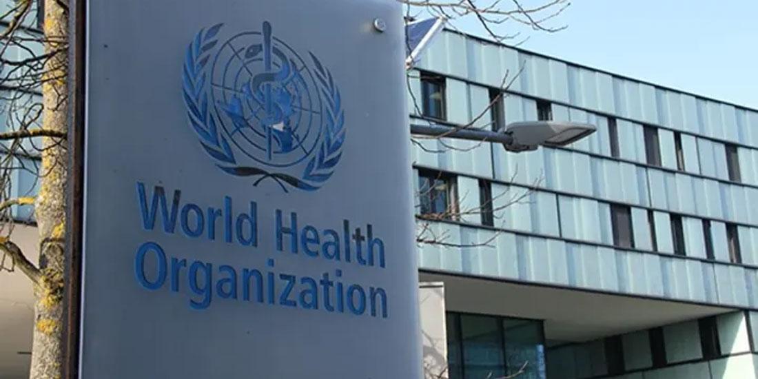 Παγκόσμιος Οργανισμός Υγείας: Αποστολή, πόροι, επιτυχίες και αποτυχίες