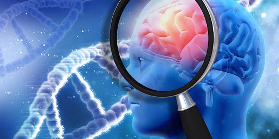 Οι υγιεινές συνήθειες ασπίδα προστασίας από το Αλτσχάιμερ