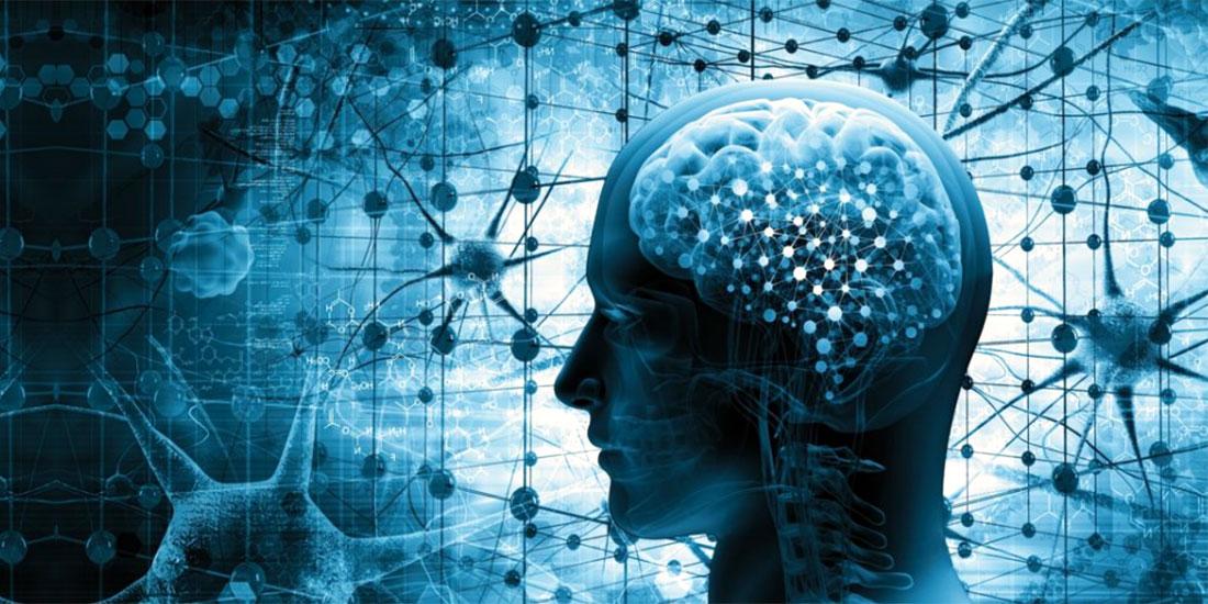 Αμοιβάδα «τρώει» τα εγκεφαλικά κύτταρα στη Φλόριντα!