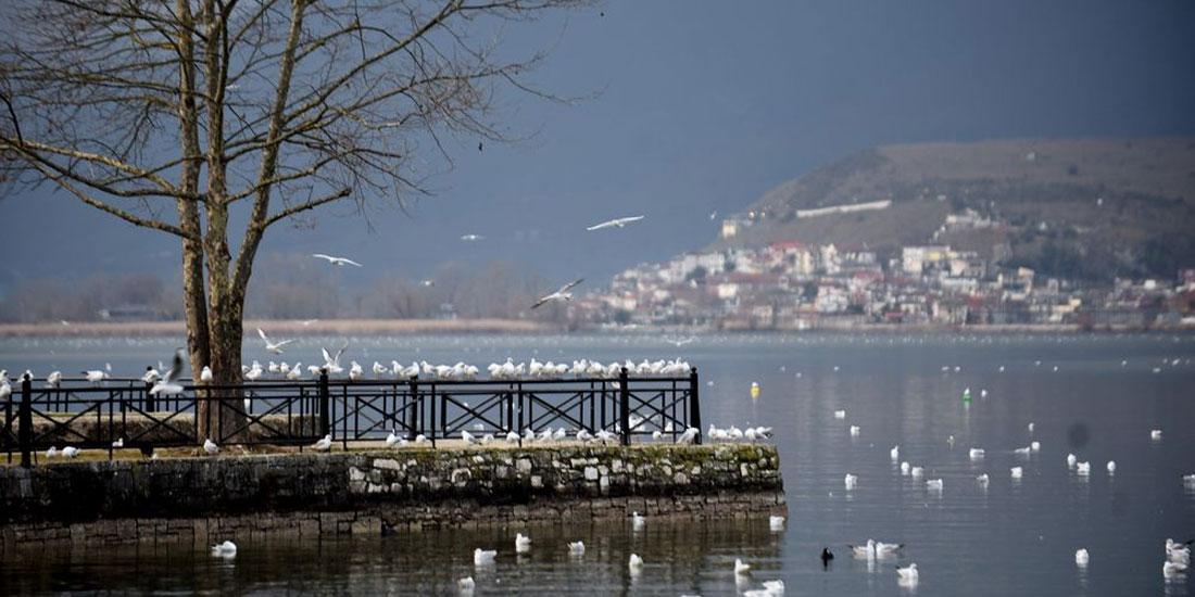 Ιωάννινα: Θετικό σήμα κορωνοϊού στα ακάθαρτα ύδατα της πόλης