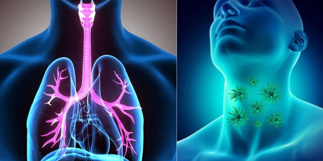 Θετική γνωμοδότηση της CHMP σε θεραπεία για το ανεγχείρητο προχωρημένο, υποτροπιάζον ή μεταστατικό καρκίνωμα του οισοφάγου εκ πλακωδών κυττάρων