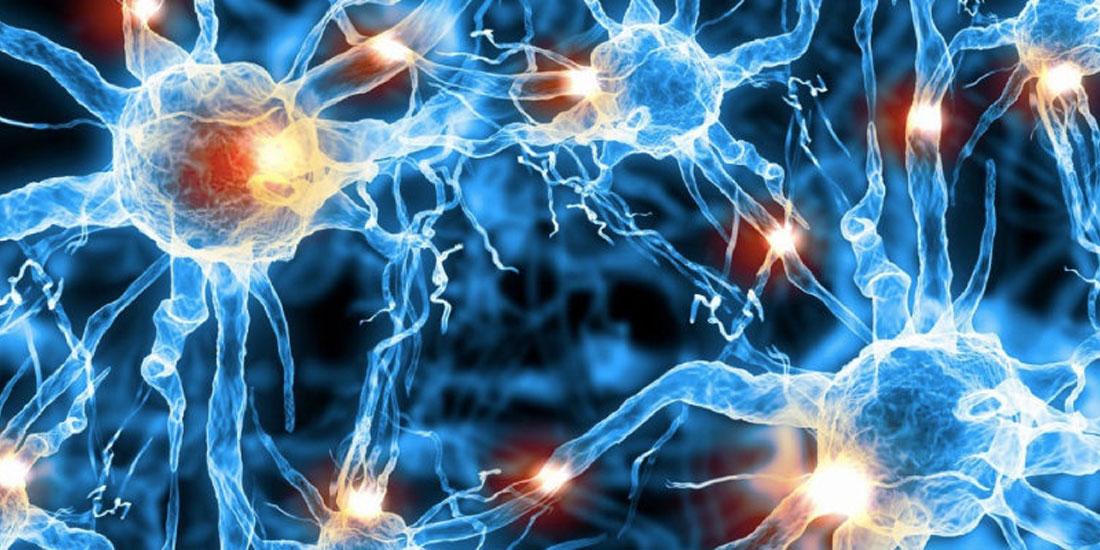 Επιστήμονες ανακάλυψαν την πρώτη ουσία που αναστρέφει τη βλάβη των νευρώνων στην Πλάγια Μυατροφική Σκλήρυνση