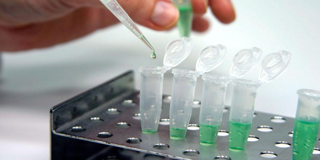 Στα Πολύ Μικρά Εμβρυϊκού Τύπου Βλαστοκύτταρα στρέφεται η έρευνα  για θεραπείες αναγεννητικής ιατρικής