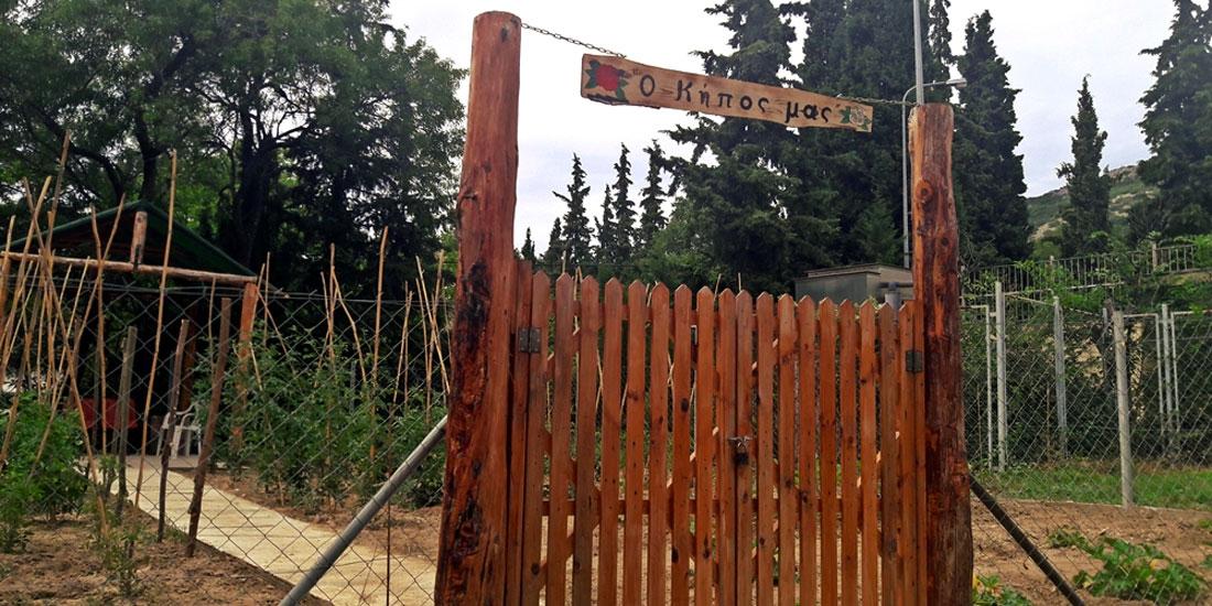 Ο κήπος είχε τη δική του ιστορία, μια ιστορία που «γράφτηκε» στην Ψυχιατρική Ενηλίκων του Παπανικολάου