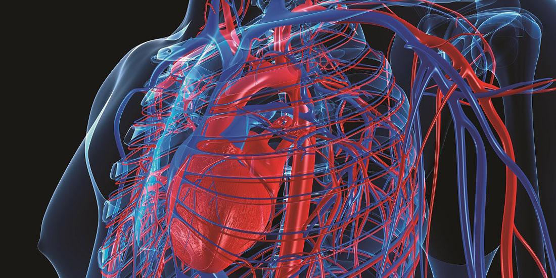 Έρευνα ακριβείας στο καρδιαγγειακό με τη συνεργασία της Bayer και του Broad Institute των MIT και Harvard