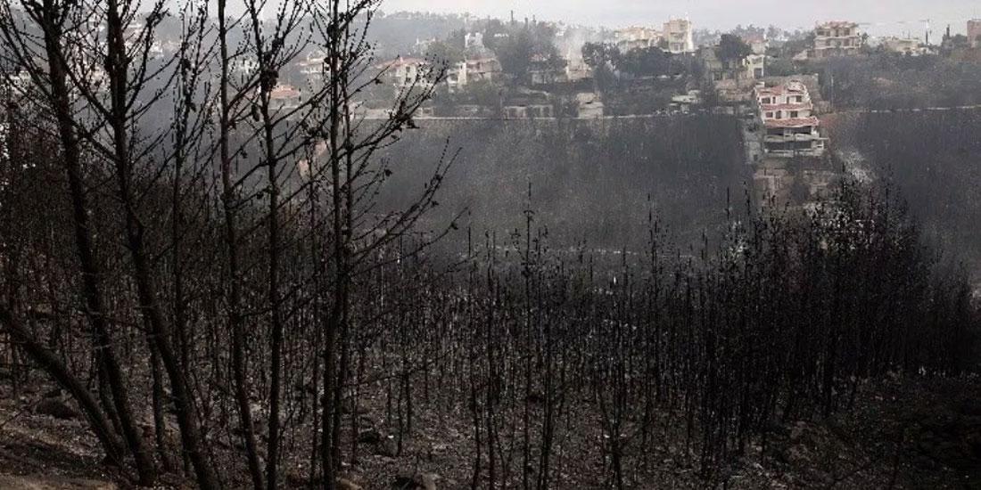 ΙΣΑ: Προβληματισμός για τις επιπτώσεις στην υγεία από τις καταστροφικές πυρκαγιές