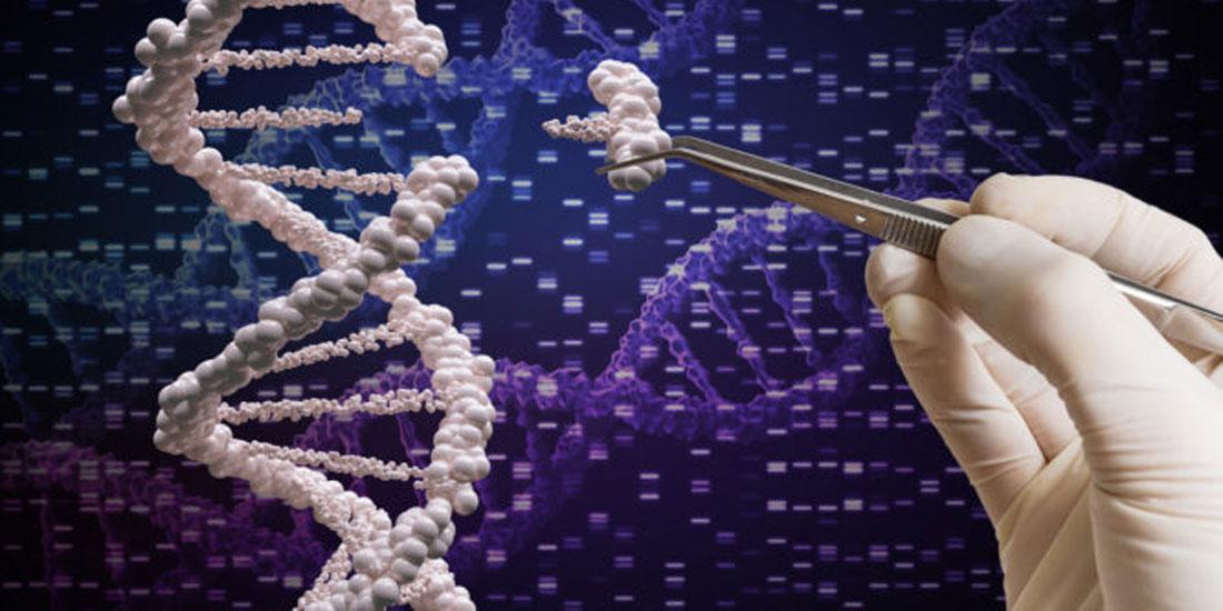 Ένα βήμα πιο κοντά στην προγεννητική θεραπεία ανθρώπινων ασθενειών