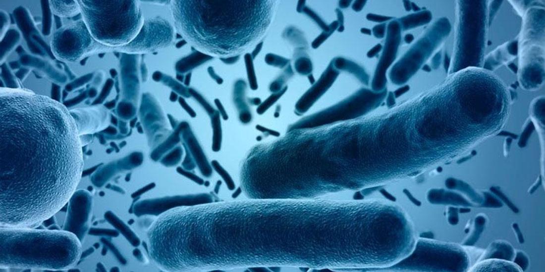 Περίπου 10.000.000 άτομα θα χάσουν τη ζωή τους από λοιμώξεις πολυανθεκτικών μικροβίων έως το 2050