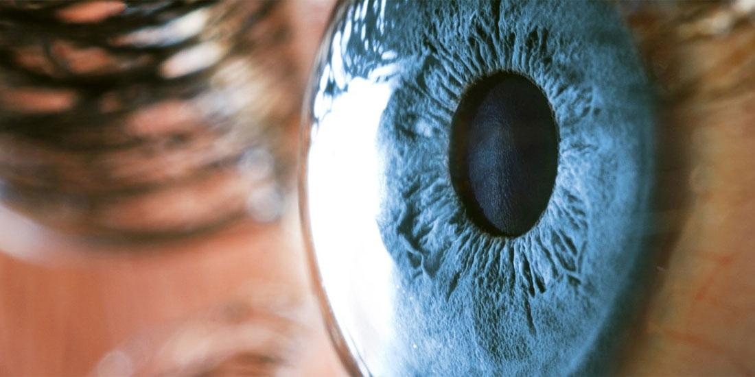 «Παθοφυσιολογία του οφθαλμού και συνήθεις οφθαλμολογικές παθήσεις» το θέμα του 5ου κύκλου Σεμιναρίων του ΦΣ Θεσσαλονίκης