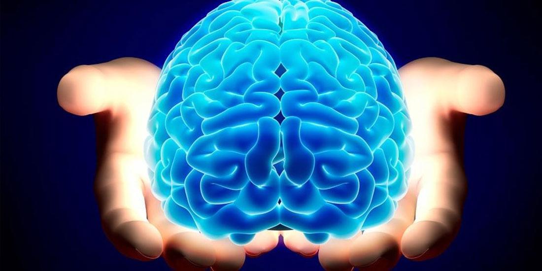 Μικρότερο όγκο εγκεφάλου έχουν οι παχύσαρκοι...